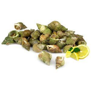 100 gr Bulots cuits